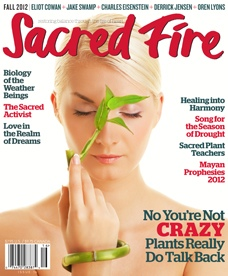 Sacred Fire Magazine, Issue Issue 16